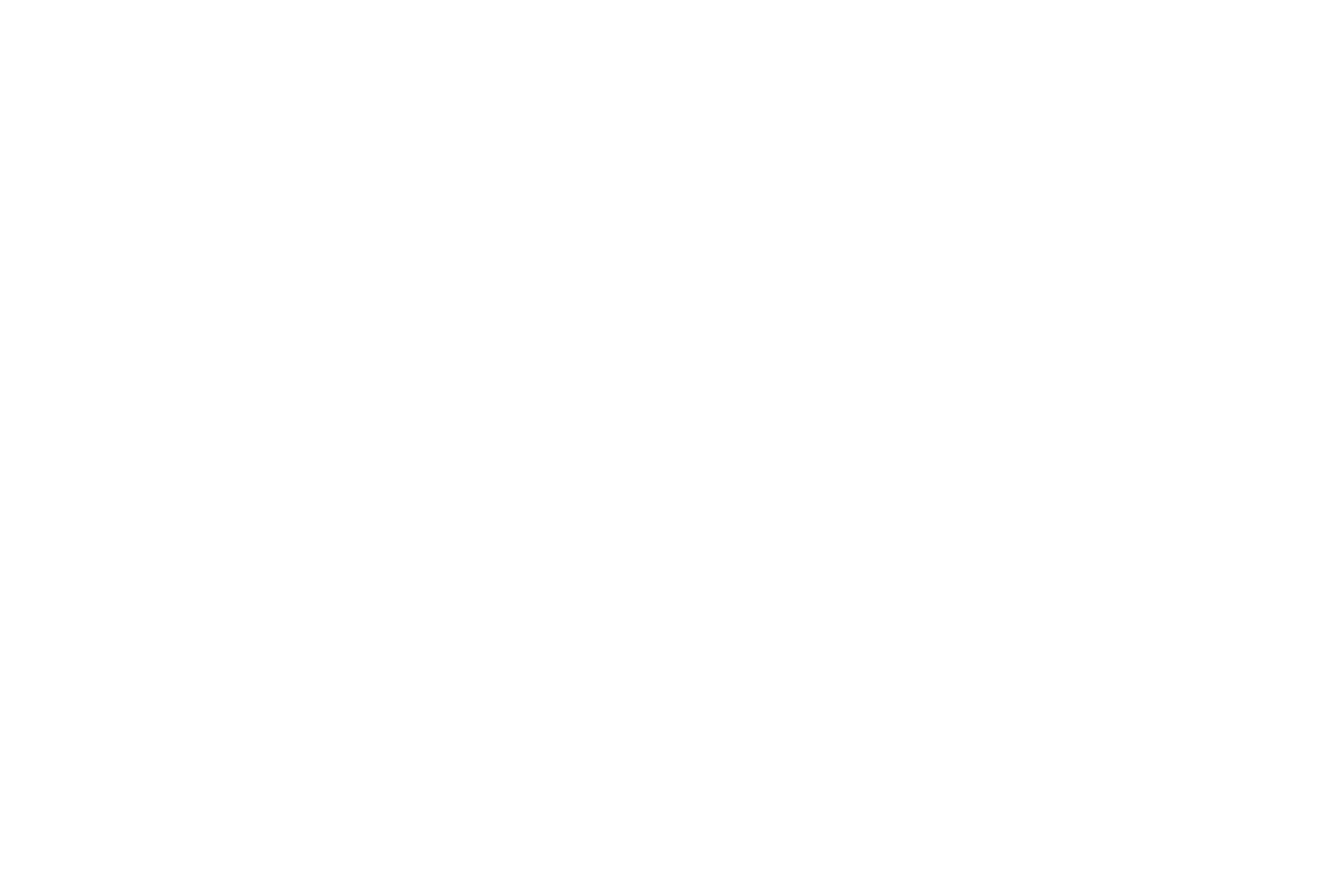 Logo_Norman_Pohl
